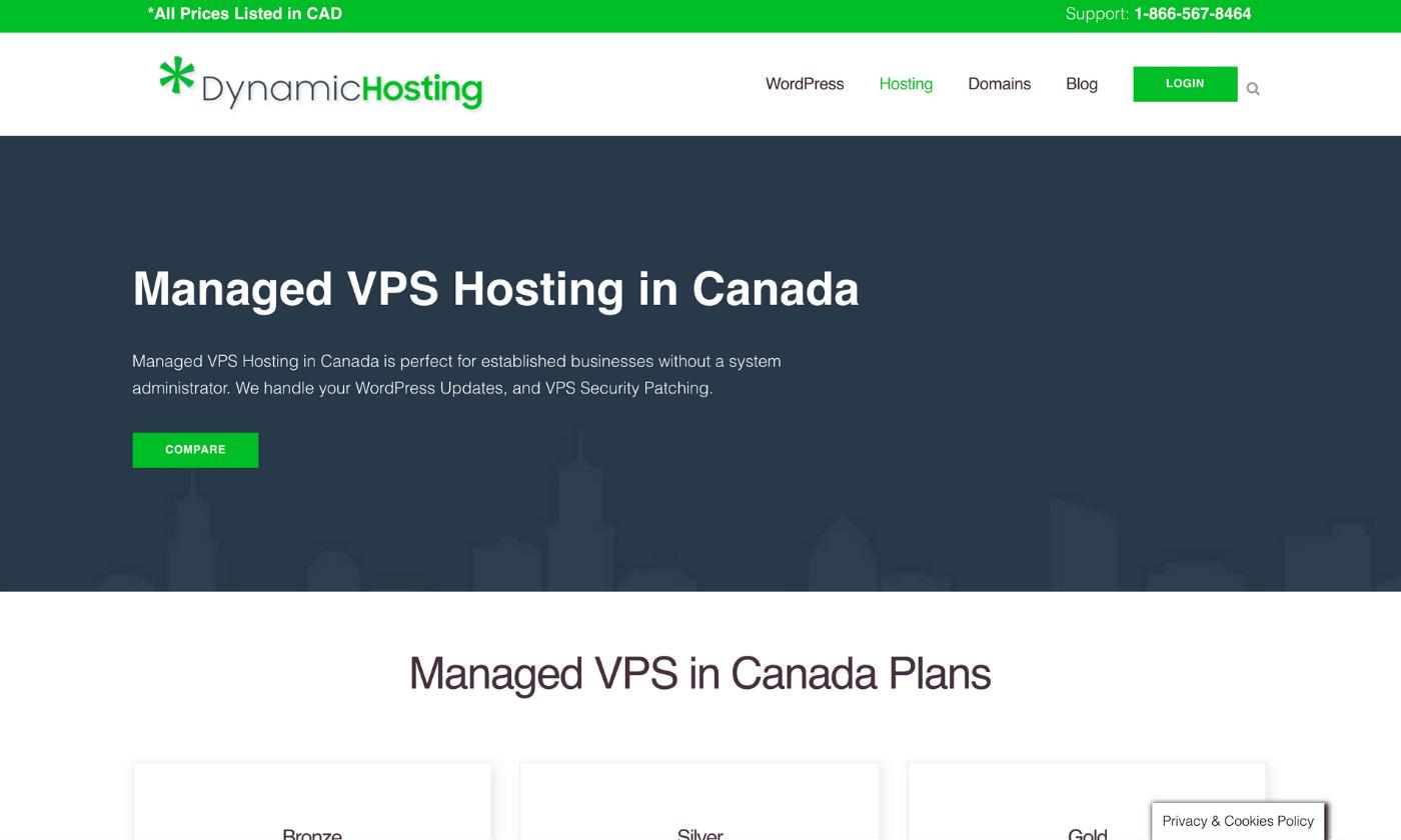 Dynamic hosting managed vps hosting website screenshot